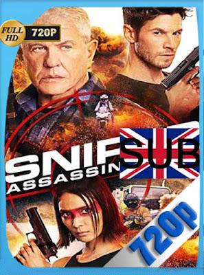 Sniper: Assassin's End (2020) HD[720P] subtitulada [GoogleDrive] DizonHD