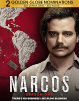 Narcos Season 1 Dual Audio [Hindi-DD5.1] 720p HDRip ESubs Download