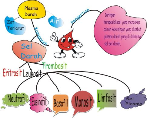 Model pembelajaran mind mapping