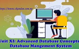 Unit XI: Advanced Database Concepts – Database Management System