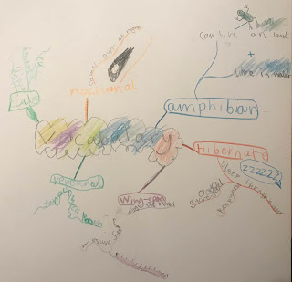 My Child Loves MindMapping