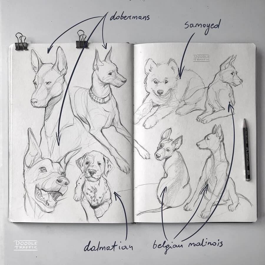 03-Dog-Drawings-Gaby-Niko-www-designstack-co