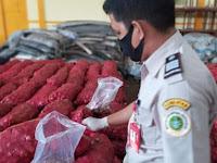 Sebanyak 35 Ton Bawang Merah Impor Ilegal Dikuasai Negara