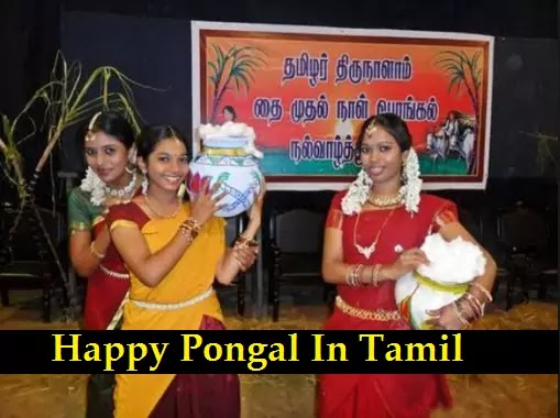 Happy Pongal Wishes, Greetings, Quotes, Images, Messages, SMS, Sayings In the Tamil Language