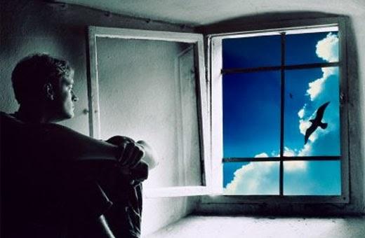 a musica esperando na janela cogumelo plutao