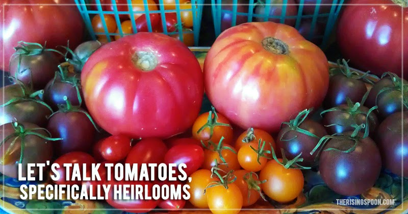 Let's Talk Tomatoes, Specifically Heirlooms a.k.a. Why Regular Tomatoes Suck | therisingspoon.com