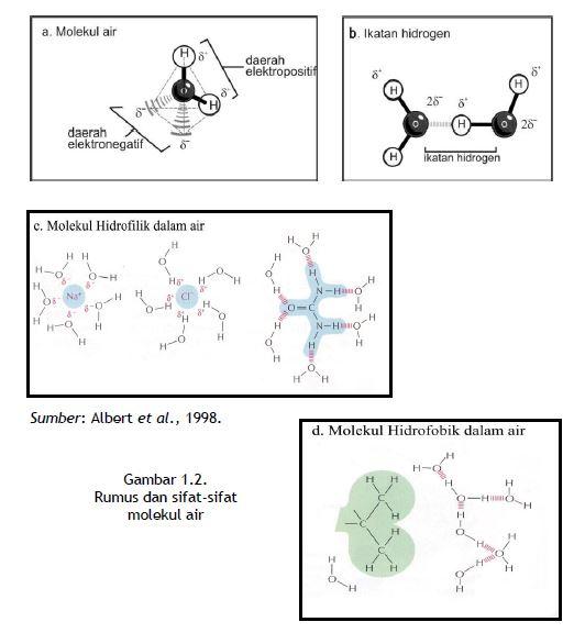 Rumus dan sifat-sifat molekul air