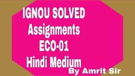 IGNOU FREE SOLVED ASSIGNMENTS 2019-20 | ECO-01 Business Organisation | TMA-2019-20-HINDI MEDIUM |