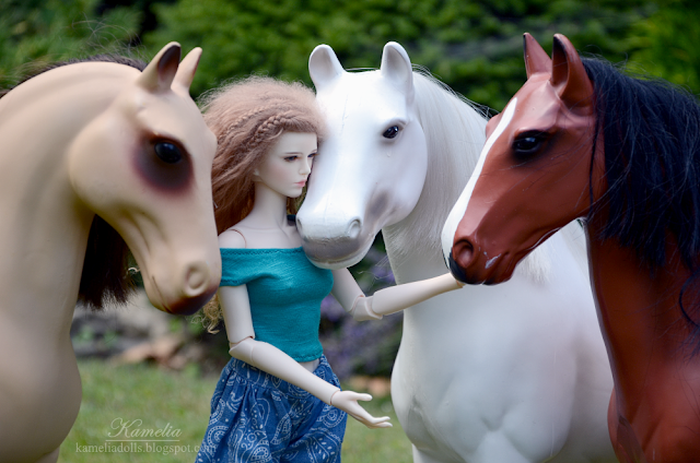 Raccoon Doll Daisy and Our Generation Battat Horses