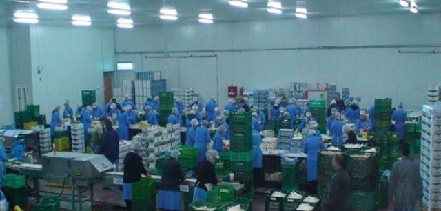 Συσκευαστήριο στην περιοχή του Άργους ζητάει μονίμους εργάτες/τριες