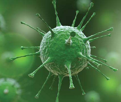 Korona Virüsüne Karşı Sağlık Bakanlığı 14 Gün Kuralı Nedir?
