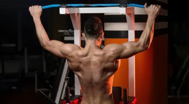 بناء عضلات ظهر أكبر