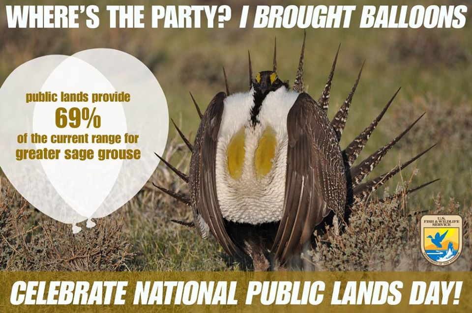 National Public Lands Day Wishes Images