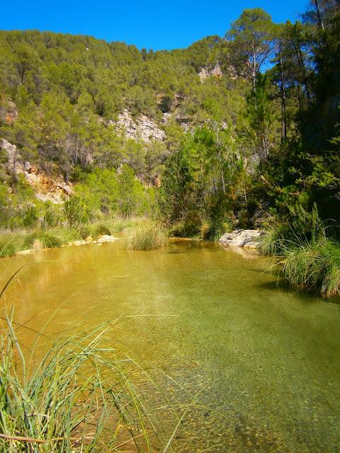 El río Fraile, en Bicorp. Autor: Miguel Alejandro Castillo Moya.