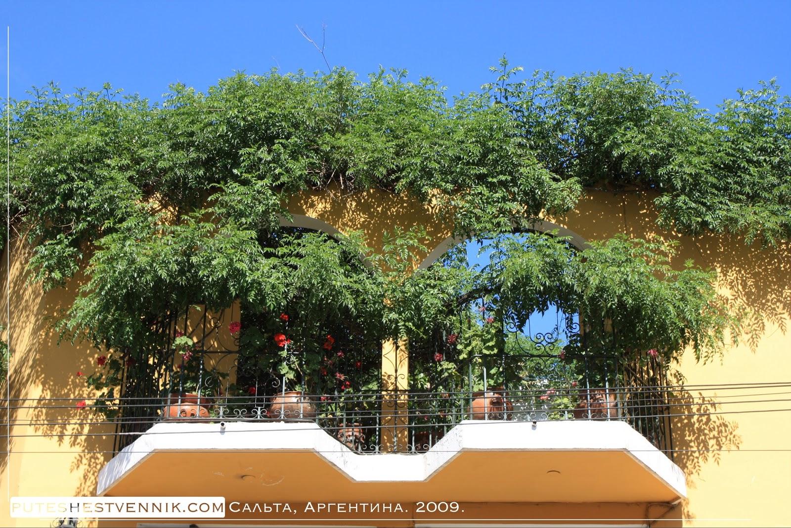 Сады на балконах в Сальте