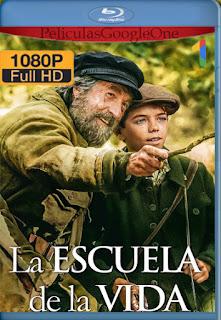La Escuela de la Vida [2017] [1080p BRrip] [Latino-Inglés] [LaPipiotaHD]