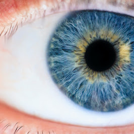 Engineers create an artificial eye that restores vision to the blind!