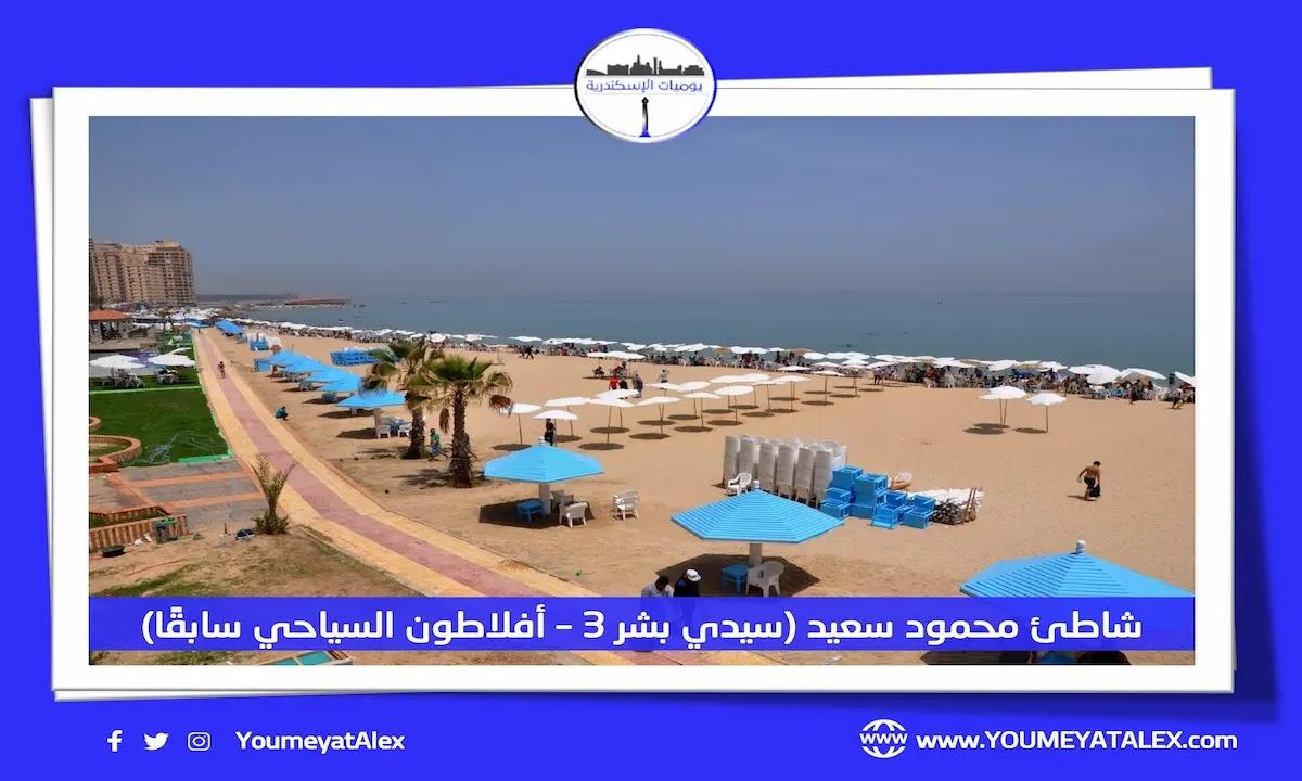 شاطئ محمود سعيد السياحي
