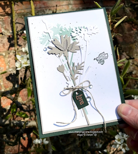 handmade card using quiet meadow bundle stampin up with zoe tant