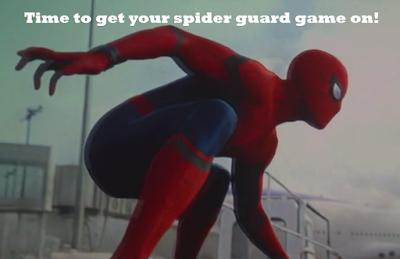 spider guard bjj