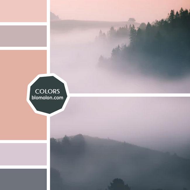 variedad_en_color_moodboard_42