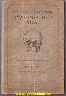 Anatomischer Atlas, volume 3, 1923