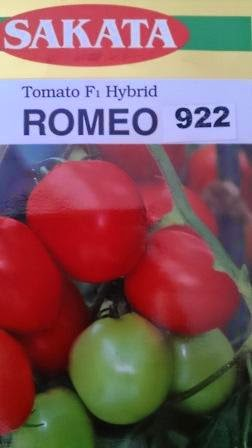 Benih,Romeo,Tomat Romeo Murah, tomat, tahan virus,kuning, keriting, unggul, dataran rendah, tinggi, petani, Sakata Seed, Harga Murah