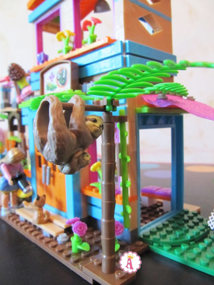 Ленивцы на пальме