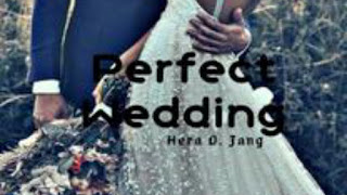 Novel perfect wedding