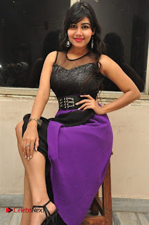 Telugu Actress Rachana Smith Stills at Money is Honey Audio Release  0036.jpg
