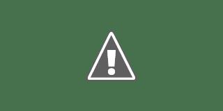 Fotografía de una mano cruzando un campo de trigo