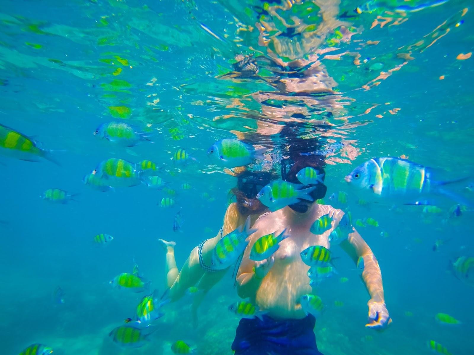 snorkelling in phuket