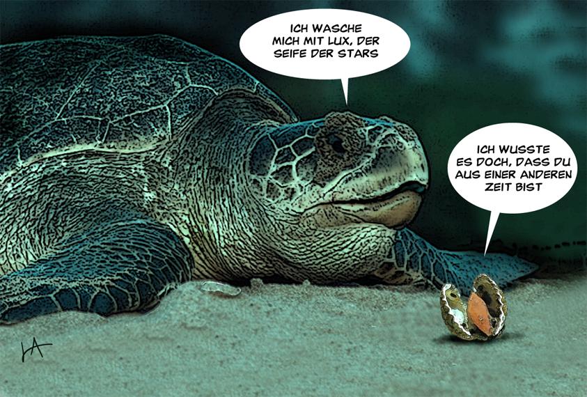 schildkröten sprüche Tagesfisch: Veraltete Schildkröte schildkröten sprüche