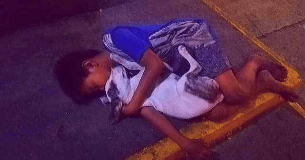 Heartbreaking Photo of Homeless Boy Hugging His Pet Dog Goes Viral