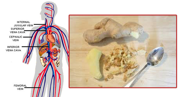 These Are The INCREDIBLE Things That Happen To Your Body When You Start Eating Ginger Every Day
