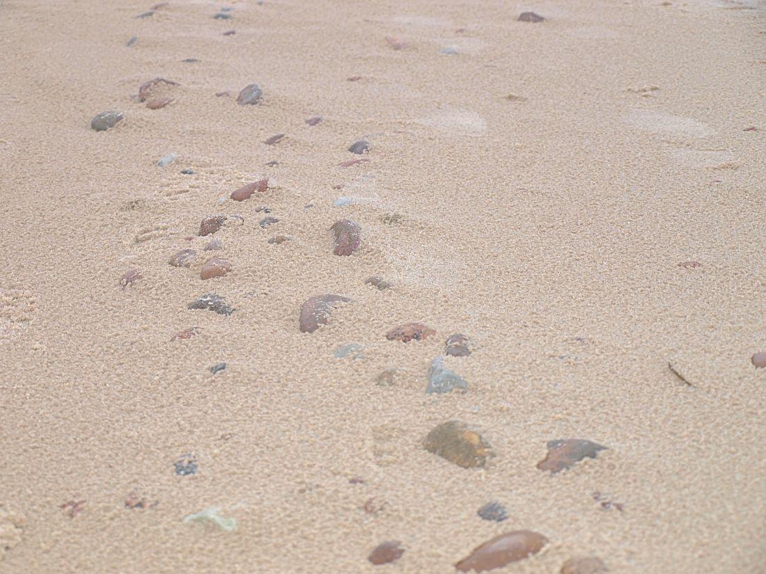 o zyciu nad morzem blog