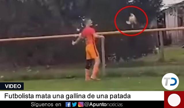 animales,futbolista