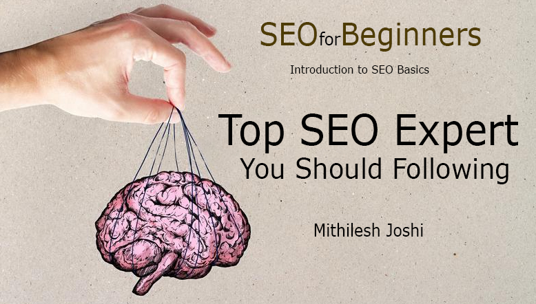 Top SEO Expert You Should Following - SEO Beginners