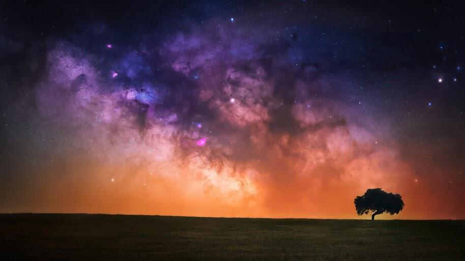 Starry, Sky, Night, Scenery, Horizon, 4K, #6.983