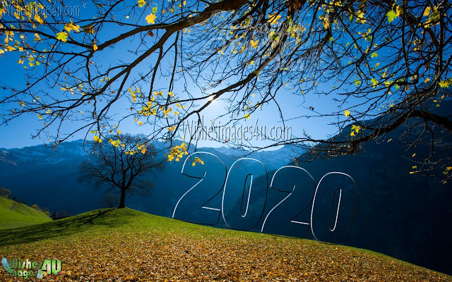 Happy New Year 2020 Nature Pictures Download For Desktop