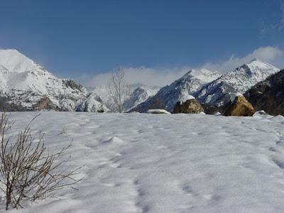 Foto de nieve en cantidad sobre la tierra
