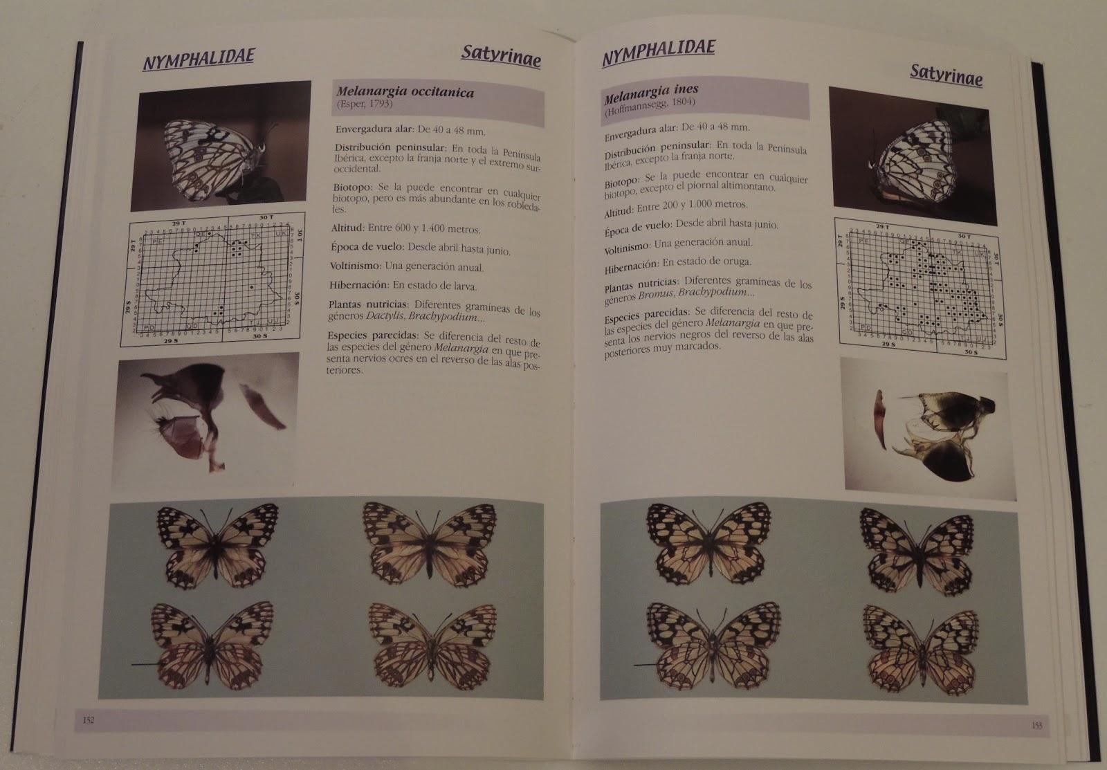 Mariposas diurnas de la provincia de Cáceres