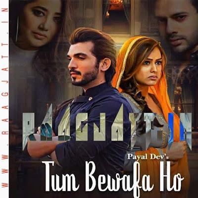 Tum Bewafa Ho by Payal Dev, Stebin Ben lyrics