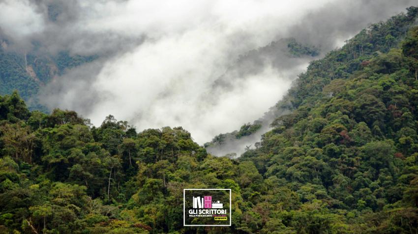 Amazzonia peruviana: viaggio nel Parco Nazionale del Manu