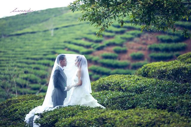 Chọn địa điểm để chụp hình cưới ở Đà Lạt đẹp