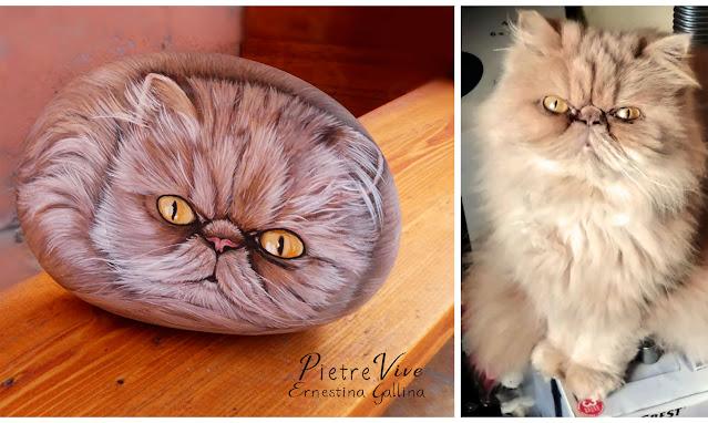 Ritratto di gatto persiano su sasso