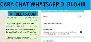 Cara Chat ke Kontak yang Blokir Kita di Whatsapp 2018 (100% Work)