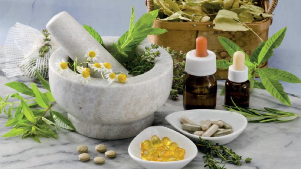 Las Plantas medicinales en el Perú