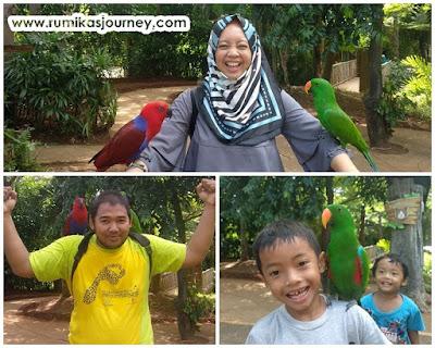 burung di faunaland ancol jakarta