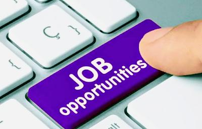 Telangana Anganwadi Jobs